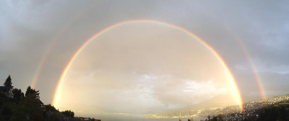 Regenbogen Paradies