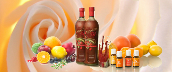 Ningxia Red Newsletter